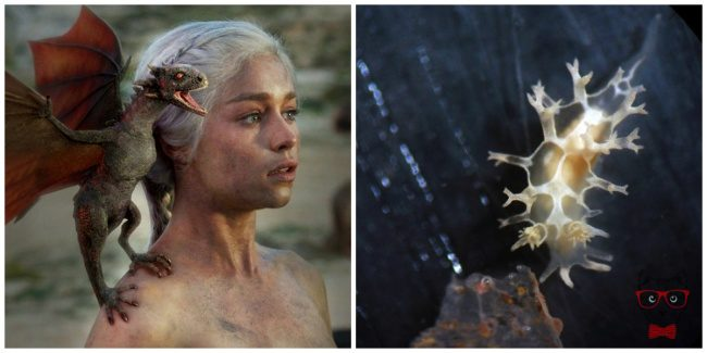 22 Facts About Game Of Thrones That Make This Series Even More Interesting 15