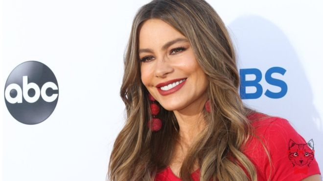 Sofia Vergara Receives Harsh Criticism For The Ostentatious Party She Gave Her Pet