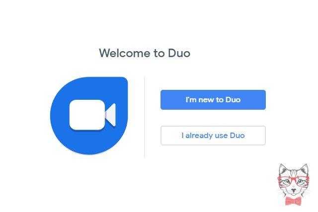 Google Duo Online