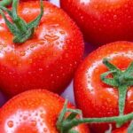 10 Super Food Foods That Increase The Efficiency Of Lose Weight