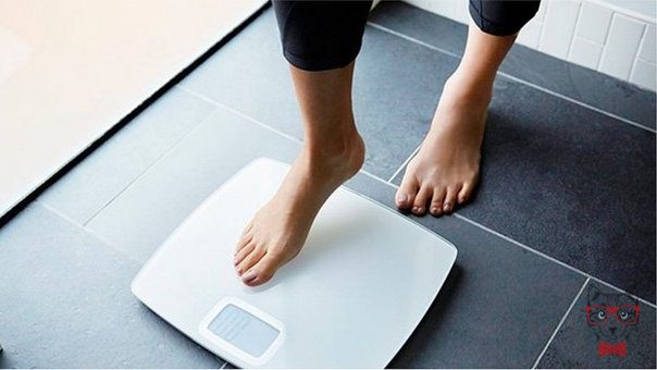 Know 4 Home Remedies To Lose Weight