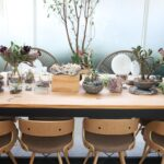 What You Need To Know Before You Have Plants At Home
