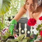Secrets To Keeping Your Plants Perfect During Quarantine. Photovix.