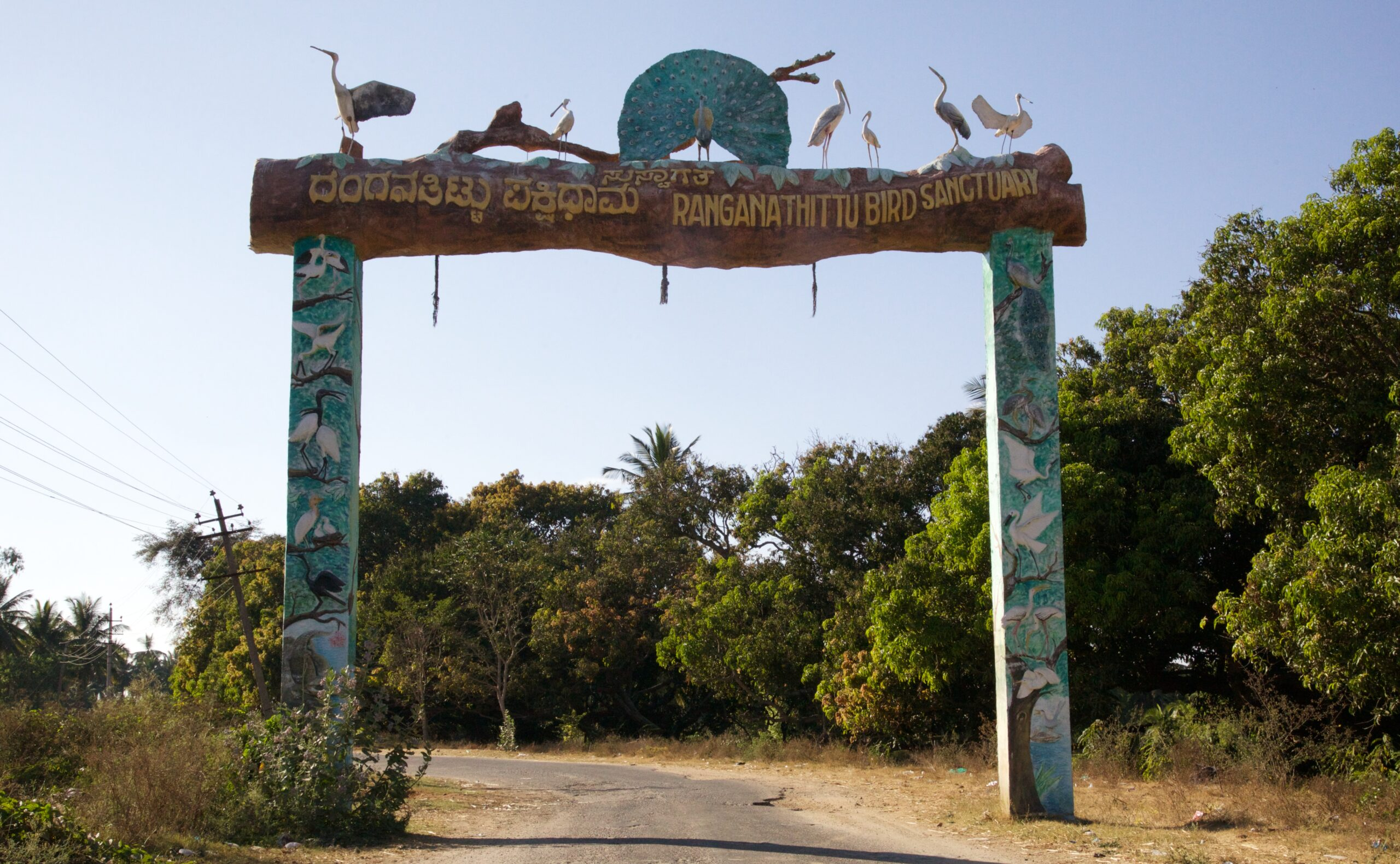 Ranganathittu Bird Sanctuary Mysore Scaled