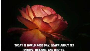 Today Is World Rose Day Learn About Its History Meaning And Quotes.