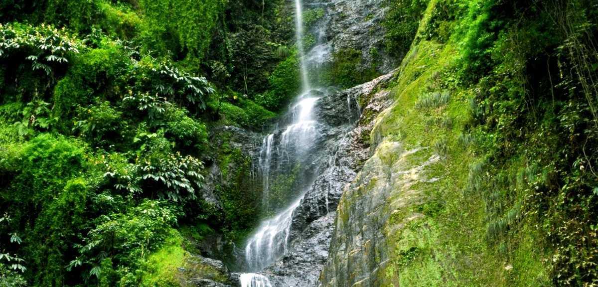 Chadwick Waterfall