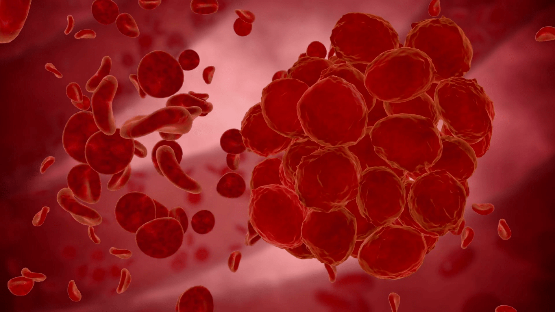 Erythrocyte Red Blood Cells Virus Bacteria Anatomy Medical Concept Siinz0G8X Thumbnail Full05 2